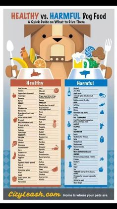 Safe and unsafe foods for dogs!