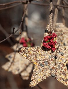 Don't forget your feathered friends this holiday season. These easy-to-make birdseed ornaments will keep winged visitors happy. Simple step-by-step tutorial.