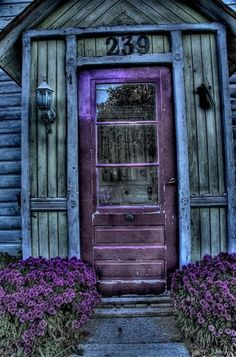 Purple door & Purple flowers!!