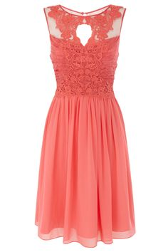 Lattie #Dress - cocktail dress with lace by coast