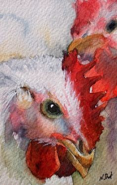 watercolor paintings of chickens ...