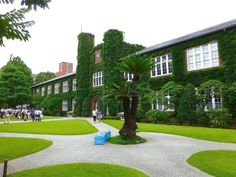 立教大学。 . 前に来たのは、いつだったか、 ちょっと思い出せないくらい、 久しぶりに訪れました。 . それぐらい久しぶりだったため、 前のことがハッキリと思い出せないのですが、 行ってみると、 「あれ、こんな感じだったかな」、 と思いました。 . 立教大学のキャンパスと言えば、 広々とした芝生の庭を囲むように、 低層の、煉瓦造建築が点在している、 「絵に描いたような美しいキャンパス」、 というイメージを持っていました。 . ただ、改めて観てみたら、 確かに、 その部分は、きちんと残っては...