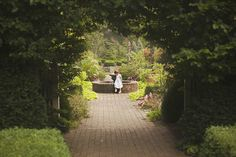 The secret garden.  Children's photography.  Child Photography.  Inspired by literature.  Garden.    Joy of Life Photography