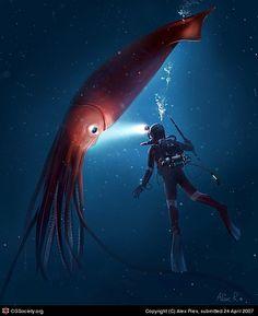 Sea Monsters by Alex Ries Ocean Deep, Deep Blue Sea, Sea And Ocean, Giant Squid, Deep Sea Creatures, Underwater Creatures, Water Life, Sea Monsters, Pisces