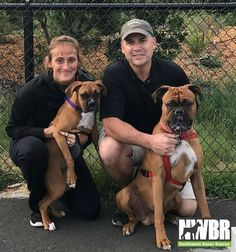 Congrats to Thelma for finding the sweetest forever family! Joni & Gene are long time Boxer parents looking forward to raising this little girl alongside their 3 year old male boxer, Lucky! Lucky recently lost his long time best friend & in Boxer fashion, knew it was time to add a playmate & Thelma fit that bill perfectly. Upon meeting, Thelma gave her new parents BIG puppy hugs & melted hearts instantly. There were games afoot with boxing & wiggles with Lucky! These two will be inseparable.