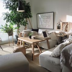 piyohopさんの、部屋全体,無印良品,照明,IKEA,ソファ,ニトリ,観賞用植物,のお部屋写真