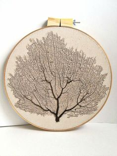 Sale Framed natural Sea Fan coral handstitched by omorfigiadesigns, $45.00
