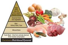 Natural Pet Food.