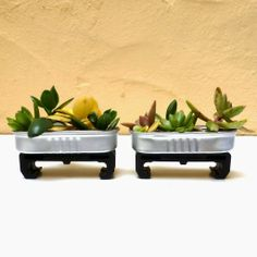 Miniature succulent planters made of recycled materials - cute!