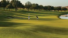 Join us at our award-winning 18-hole, par-70 golf course at Four Seasons Resort Dallas, Texas. Play a round at TPC Four Seasons Las Colinas or Cottonwood Valley Golf Course. #Dallas