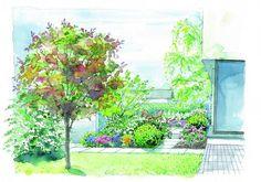 Ogród na wąskiej działce. Z czerwonym parasolem śliwy