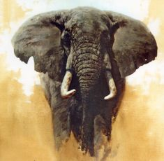 Animal Oil Painting, Art Painting On 100% Canvas