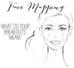 Face Mapping: Find out what your breakouts MEAN!