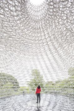 Gallery of Gallery: Wolfgang Buttress' Relocated Expo Pavilion, The Hive, Photographed by Laurian Ghinitoiu - 4