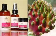 """Prickly pear is going to be the next pomegranate or acai,"" says Christina Mahar, the creator of Sia Botanics. Its juice and seed oil contains high levels of betalains, a class of super-antioxidants that help reduce inflammation and speed cellular turnover—two ""youth-preserving"" actions.  Desert plants have super-high anti-inflammatory, anti-microbial, & anti-bacterial properties, & an amazing capacity to hold moisture in"" It's loaded with vitamins & minerals."