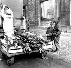 Kaninchenlieferung an der Ackerhalle, Berlin 1968: Private Kaninchenzüchter waren in der DDR angehalten, auch Tiere für die Allgemeinheit aufzuziehen. Dafür wurden sie gut entlohnt: Der Ankaufspreis lag über dem Verkaufspreis.
