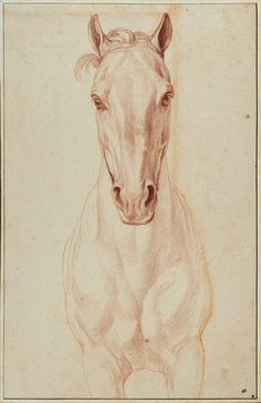 Bouchardon's 'Horse head, front view, study for the Monument to Louis XV'