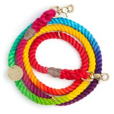 DOG & CO. | Found My Animal Prismatic Leash #PPxSDCgiveaway