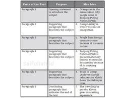 Kunci Jawaban Chapter 4 Task 4 Halaman 54-55 Kelas 10 (Menyusun Main Idea)