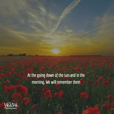 At the going down of the sun and in the morning, We will remember them Remembrance Day Posters, World War, Leadership, Sun, Random, Business, Health, Health Care, Store