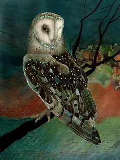 Výsledok vyhľadávania obrázkov pre dopyt barn owl painting