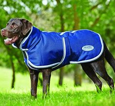 Comfitec Parka with Belly Wrap 1200 Denier Dog Blanket Weatherbeeta - Dog Blankets Waterproof Dog Coats, Dog Sweaters, Medium Dogs, Working Dogs, Dog Accessories, Bleu Marine, Large Dogs, Best Dogs, Animals