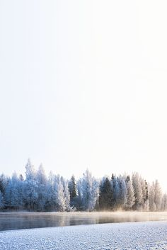 Amazing photos of Finland in winter where you'll find a real winter wonderland. Check it out to see for yourself of pin it for later!