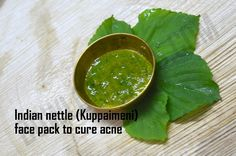 Indian nettle face mask to clear acne - DIY – Bowl of Herbs
