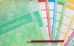 Goal Setting Planner 2013 Freebie | Bizuza Printables....aah well I think I could use it for 2015 as well printabl diy, planner printabl, printabl organ