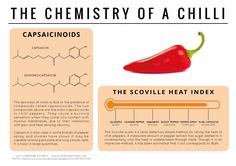 The chemical compounds behind the spiciness of a chilli. Click on 'visit site' to read more & download.