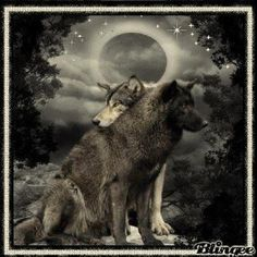 Indian wolves Blingee | Native American Women With Wolves