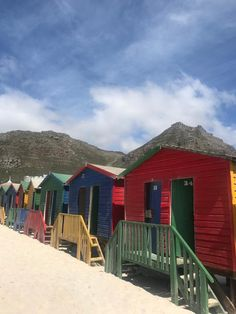 The version of Muizenberg beach I sadly got to see National Botanical Gardens, Stuff To Do, Things To Do, V&a Waterfront, Sea Plants, List Of Activities, Table Mountain, Pictures Online, Most Beautiful Cities