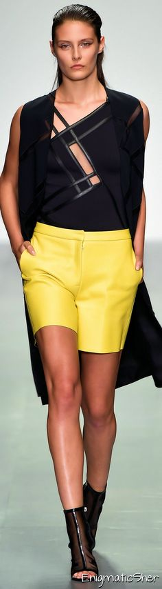 David Koma Spring Summer 2015 Ready-To-Wear