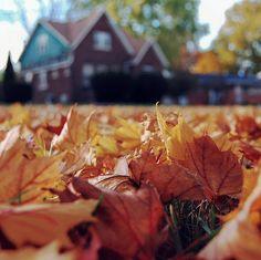 Autumn'ness