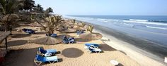 the gambia offers