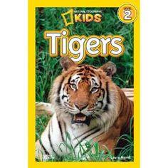 Nonfiction tiger book idea