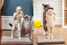 Pisici care-i atacă pe Putin și Kim Jong-un