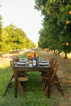 40 Mediterrane Tischdeko Ideen U2013 Exotische Reiseziele Zu Hause! | Tischdeko  | Pinterest | Gardens