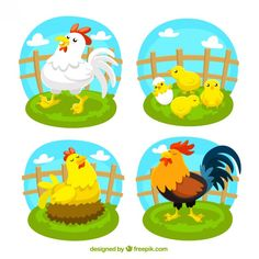 Variety of poultry , Animal Quilts, Baby Quilts, Digital Illustration, Tweety, Poultry, Preschool, Creations, Sketches, Clip Art