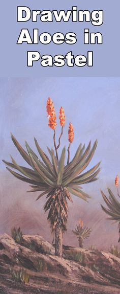 How to Draw Aloes in Pastel - Online Art Lessons Drawing Lessons, Drawing Techniques, Art Lessons, Drawing Tips, Chalk Pastels, Soft Pastels, The Light Is Coming, Pastel Artwork, Tutorials