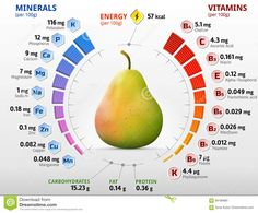 Vitamins And Minerals Of Pear Fruit Stock Vector - Illustration of healthy, fruit: Vitamins For Skin, Vitamins And Minerals, Liquid Vitamins, Daily Vitamins, Health Diet, Health And Nutrition, Sports Nutrition, Mineral Chart, Best Multivitamin