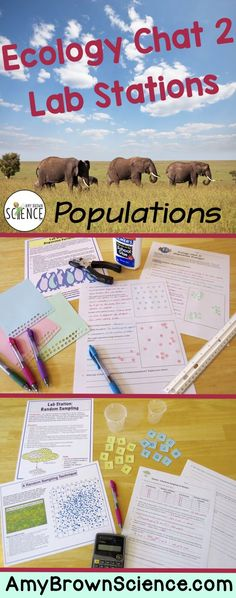 These 9 lab station activities will ensure that your students master the concepts of population ecology.