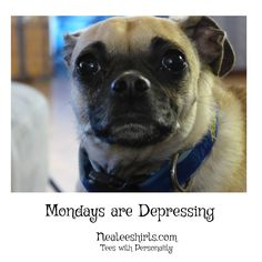 Yea, Mondays are dog darn hard! Brighten them up with a Monday tee!