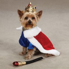 $17.10-$19.99 Treat Every Dog Like A King! Every dog can be king canine with this Royal Pup Costume! Includes a red cape with faux fur trim, a blue satin shirt, a plush crown, and a scepter toy with squeaker. Boasts a Velcro closure for a comfy fit. Perfect match for our Kingdom Collection Fairy Princess costumes! (Sold Separatly).