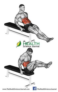 Seated Flat Bench Knee Pull-in
