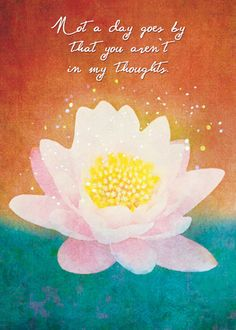 There is no evil in the world and never was rather it exists soulebrate greeting card lotus m4hsunfo