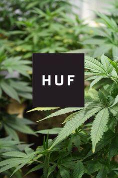 HUF Fotografie