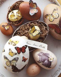 butterflies in egg boxes (marthastewart)