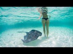 SUNDAY VIDEO. Dreaming summertime... in kitesurf mode - Sail Universe