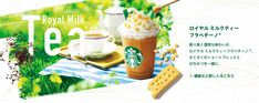 Starbucks Coffee, Banner Design, Food Photo, Jasmine, Packaging Design, Milk, Pudding, Foods, Drinks